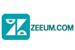 Zeeum.com at BigDad Brand names Start-up Business Brand Names. Creative and Exciting Corporate Brand Deals at BigDad.com