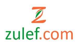 Zulef.com at BigDad Brand names Start-up Business Brand Names. Creative and Exciting Corporate Brand Deals at BigDad.com