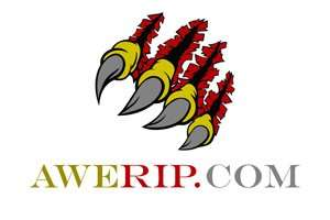 AweRip.com at BigDad Brand names Start-up Business Brand Names. Creative and Exciting Corporate Brand Deals at BigDad.com