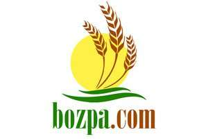 Bozpa.com at BigDad Brand names Start-up Business Brand Names. Creative and Exciting Corporate Brands at BigDad.com.