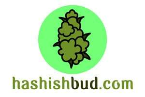 HashishBud.com at StartupNames Brand names Start-up Business Brand Names. Creative and Exciting Corporate Brand Deals at StartupNames.com
