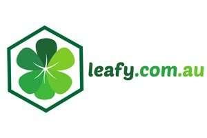 Leafy.com.au at BigDad Brand names Start-up Business Brand Names. Creative and Exciting Corporate Brand Deals at BigDad.com