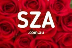 SZA.com.au at StartupNames Brand names Start-up Business Brand Names. Creative and Exciting Corporate Brand Deals at StartupNames.com