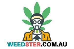 Weedster.com.au at BigDad Brand names Start-up Business Brand Names. Creative and Exciting Corporate Brand Deals at BigDad.com
