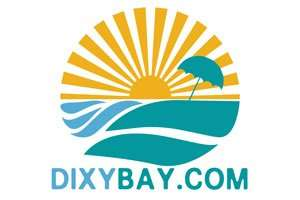 DixyBay.com at BigDad Brand names Start-up Business Brand Names. Creative and Exciting Corporate Brand Deals at BigDad.com
