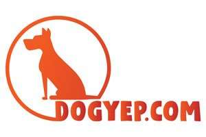 DogYep.com at StartupNames Brand names Start-up Business Brand Names. Creative and Exciting Corporate Brand Deals at StartupNames.com