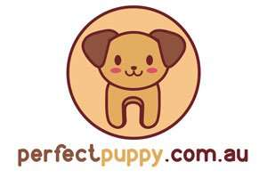 PerfectPuppy.com.au at BigDad Brand names Start-up Business Brand Names. Creative and Exciting Corporate Brands at BigDad.com.