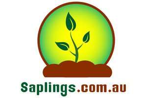 Saplings.com.au at StartupNames Brand names Start-up Business Brand Names. Creative and Exciting Corporate Brand Deals at StartupNames.com