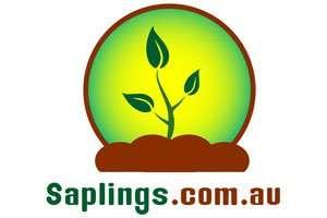 Saplings.com.au at BigDad Brand names Start-up Business Brand Names. Creative and Exciting Corporate Brand Deals at BigDad.com