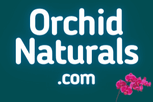 OrchidNaturals.com at StartupNames Brand names Start-up Business Brand Names. Creative and Exciting Corporate Brand Deals at StartupNames.com
