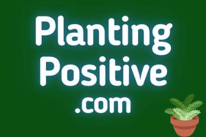 PlantingPositive.com at StartupNames Brand names Start-up Business Brand Names. Creative and Exciting Corporate Brand Deals at StartupNames.com