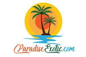 ParadiseExotic.com at BigDad Brand names Start-up Business Brand Names. Creative and Exciting Corporate Brand Deals at BigDad.com