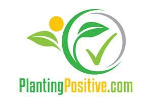 PlantingPositive.com at BigDad Brand names Start-up Business Brand Names. Creative and Exciting Corporate Brand Deals at BigDad.com