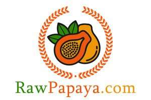 RawPapaya.com at BigDad Brand names Start-up Business Brand Names. Creative and Exciting Corporate Brand Deals at BigDad.com