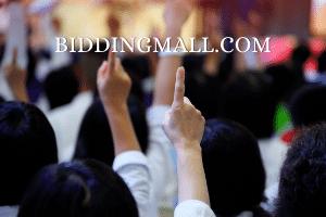 BiddingMall.com at BigDad Brand names Start-up Business Brand Names. Creative and Exciting Corporate Brand Deals at BigDad.com