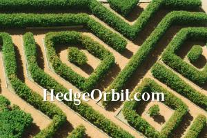 HedgeOrbit.com at BigDad Brand names Start-up Business Brand Names. Creative and Exciting Corporate Brand Deals at BigDad.com