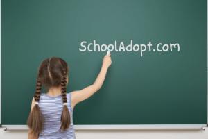 SchoolAdopt.com at BigDad Brand names Start-up Business Brand Names. Creative and Exciting Corporate Brand Deals at BigDad.com.