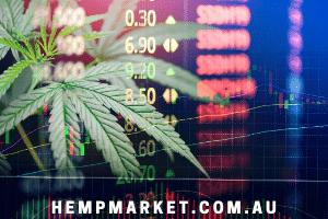 HempMarket.com.au at BigDad Brand names Start-up Business Brand Names. Creative and Exciting Corporate Brand Deals at BigDad.com