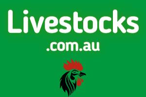 Livestocks.com.au at StartupNames Brand names Start-up Business Brand Names. Creative and Exciting Corporate Brand Deals at StartupNames.com.
