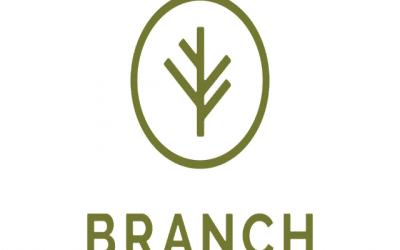 Branch raises $50M for bundled insurance