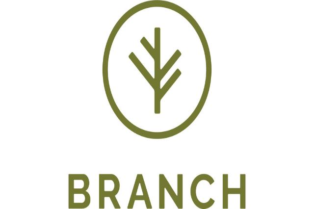 Branch raises $50M to offer bundled auto & home insurance via an API