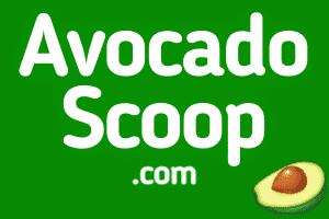 AvocadoScoop.com at StartupNames Brand names Start-up Business Brand Names. Creative and Exciting Corporate Brand Deals at StartupNames.com.