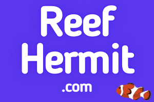 ReefHermit.com at StartupNames Brand names Start-up Business Brand Names. Creative and Exciting Corporate Brand Deals at StartupNames.com.